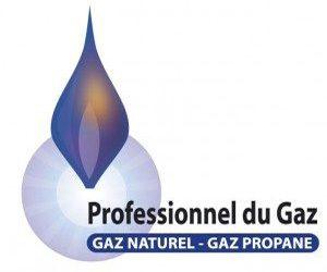 Logo-Professionnel-du-gaz